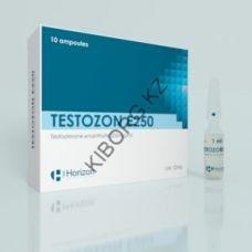 Тестостерон энантат Horizon Testozon E 250 (10 ампул) 250мг/1мл